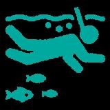 snorkeling-experiences