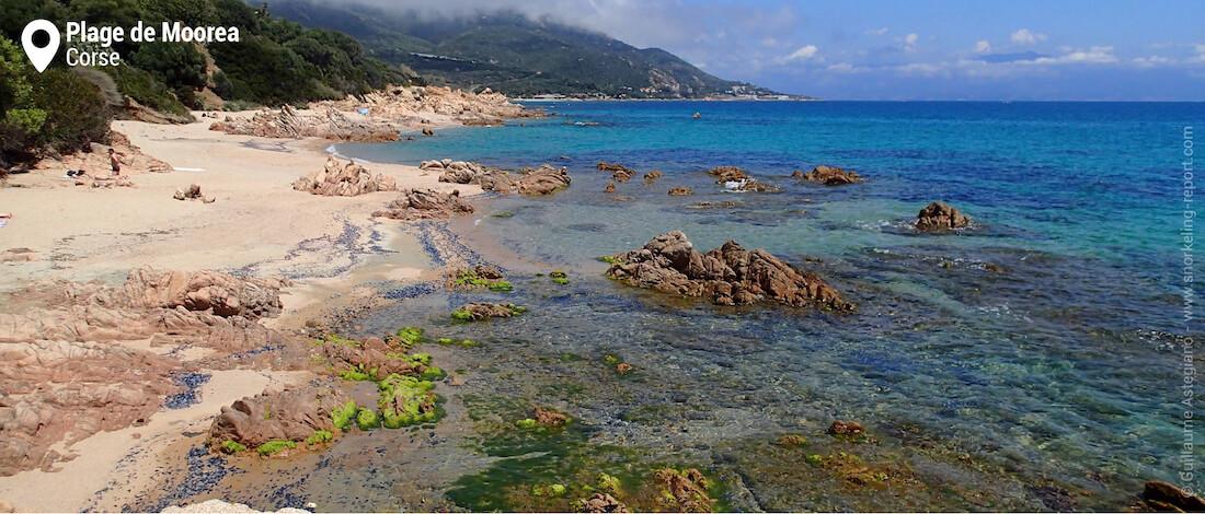 Vue sur la plage de Moorea à Ajaccio