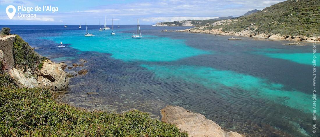 View over plage de l'Alga, Calvi