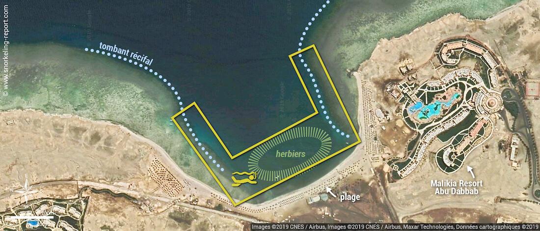 Carte snorkeling à Abu Dabbab