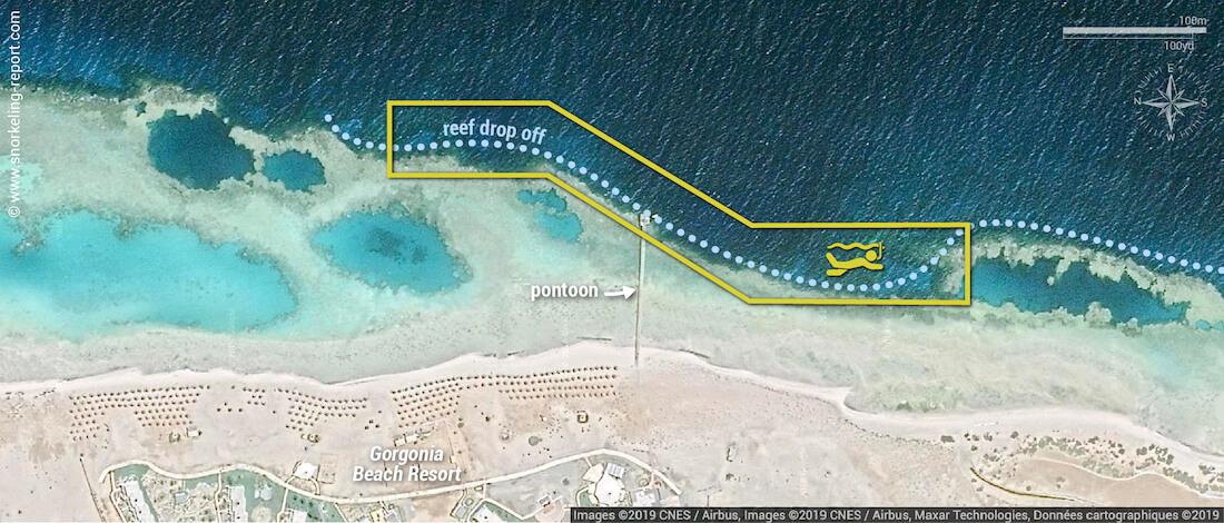 Gorgonia Beach Resort snorkeling map