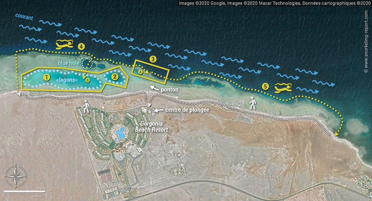 Carte snorkeling au Gorgonia Beach Resort