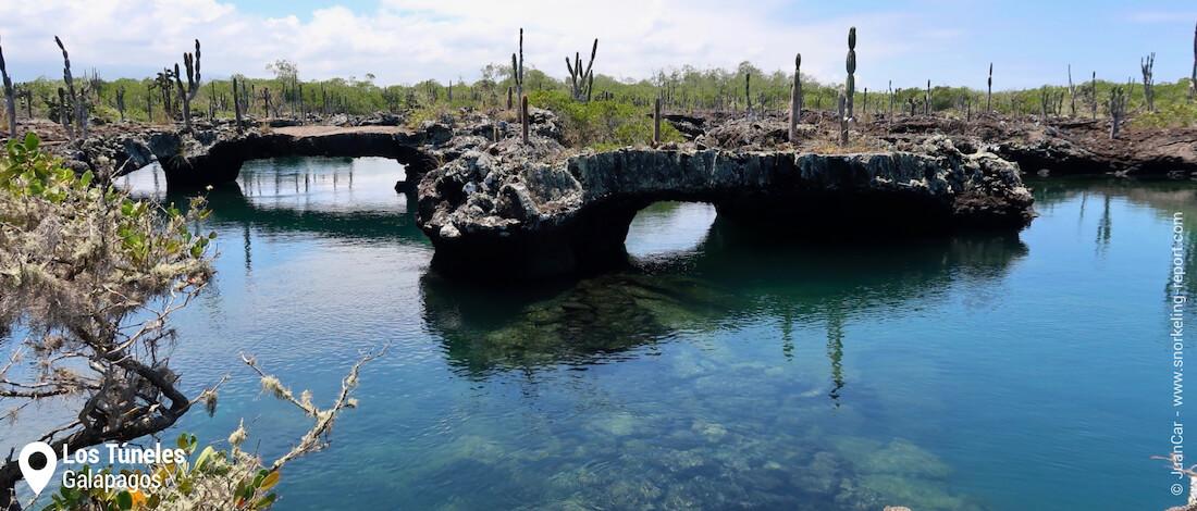 Los Tuneles, Isabela, Galapagos