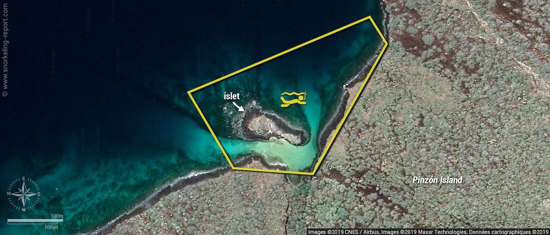 Pinzon Island snorkeling map, Galapagos
