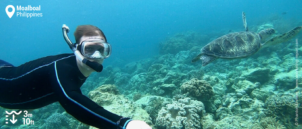 Snorkeler with a sea turtle at Moalboal