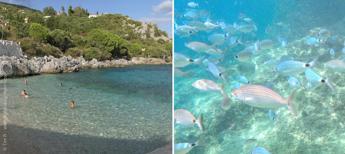 Snorkeling à Nissaki, Corfou