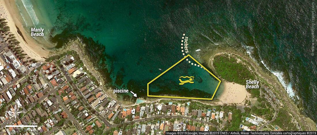 Carte snorkeling à Shelly Beach