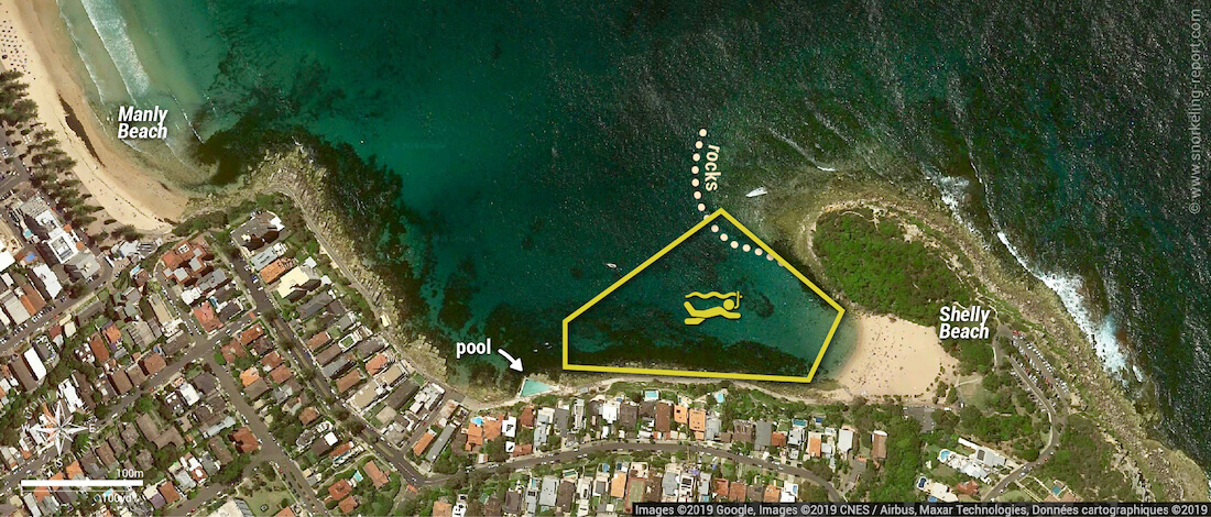 Shelly Beach snorkeling map, Manly