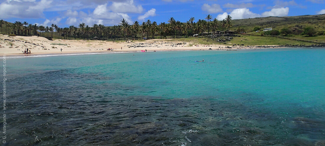 View of Anakena Beach snorkeling, Easter Island