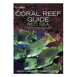 coral_reef_redsea