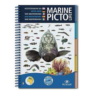 marine_pictolife_mediterranee