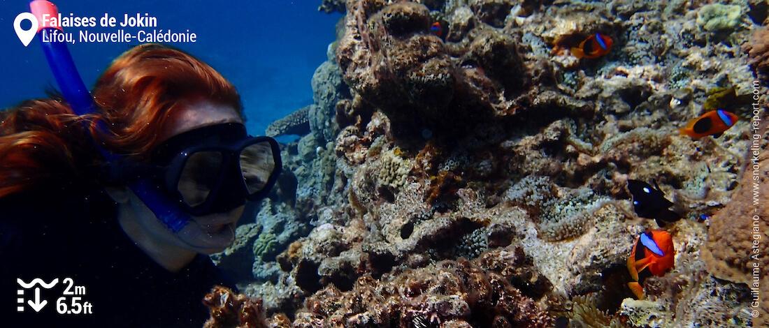 Snorkeling avec des poissons-clowns aux Falaises de Jokin