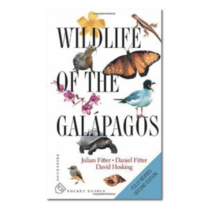 wildlife_galapagos
