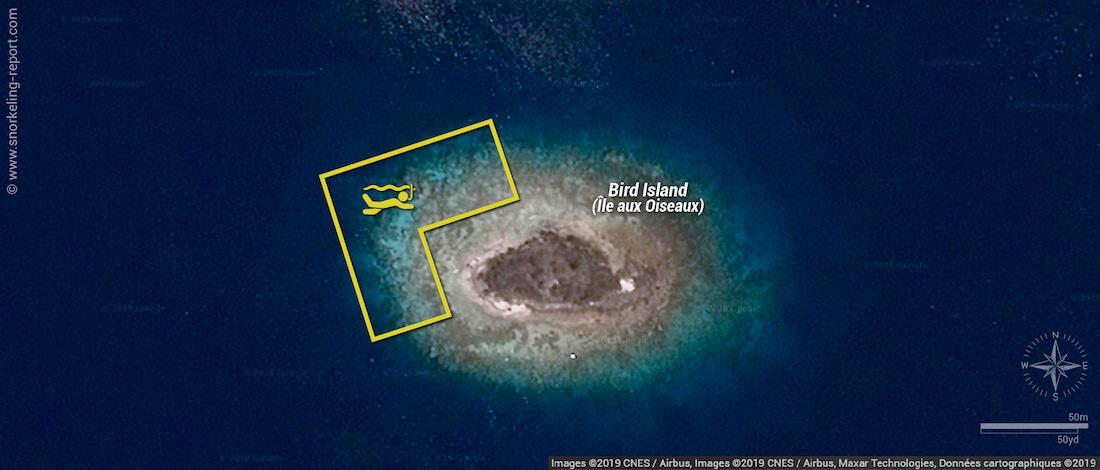 Bird Island Fakarava snorkeling map