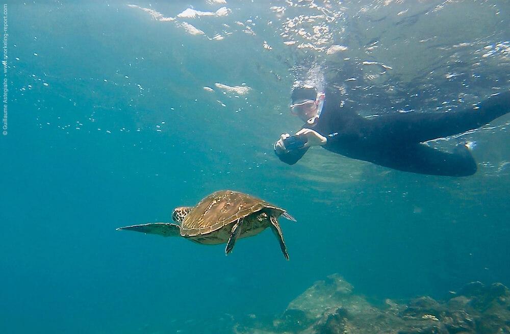 Snorkeling reporter photo