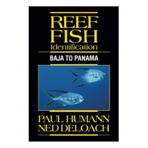Reef fish ID: Baja to Panama