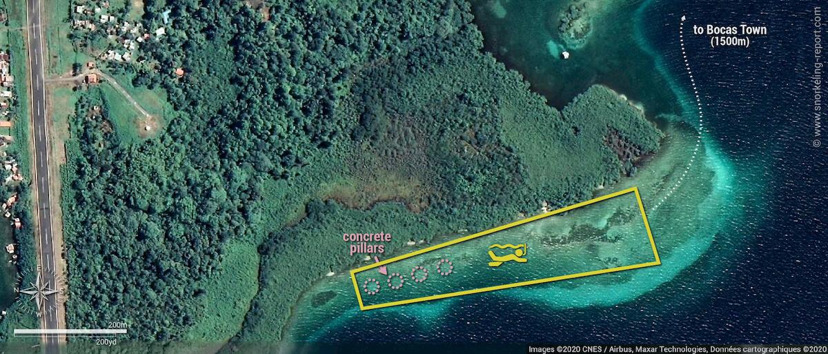 Bocas Town snorkeling area map