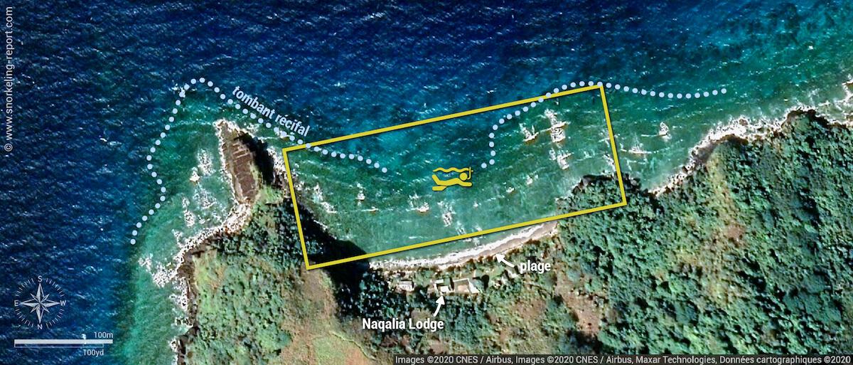 Carte snorkeling au Naqalia Lodge, Wayasewa