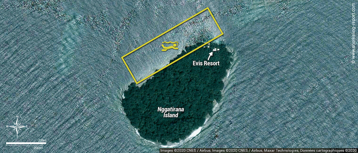Carte snorkeling Evis Resort à Nggatirana Island