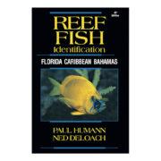 Reef fish ID: Florida Caribbean Bahamas