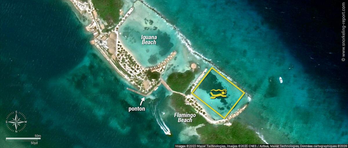 Carte snorkeling à Flamingo Beach