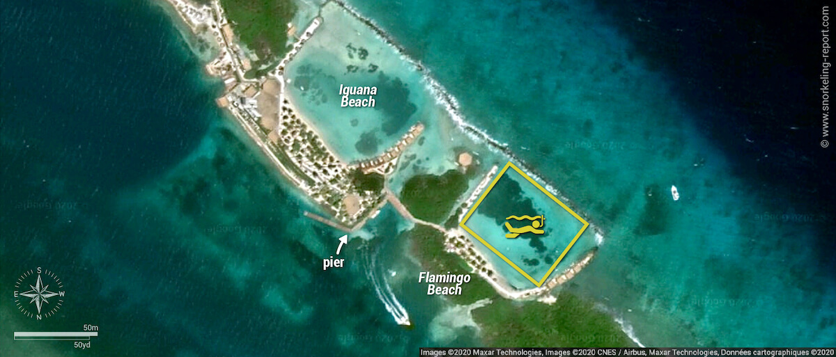 Flamingo Beach - Renaissance Island snorkeling map