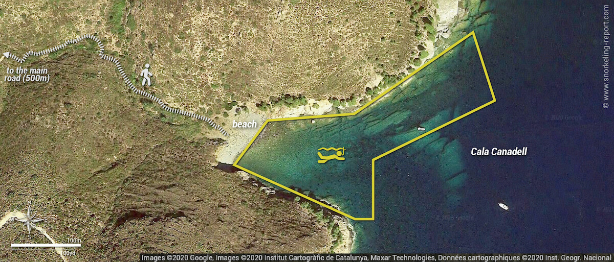 Cala Canadell snorkeling map