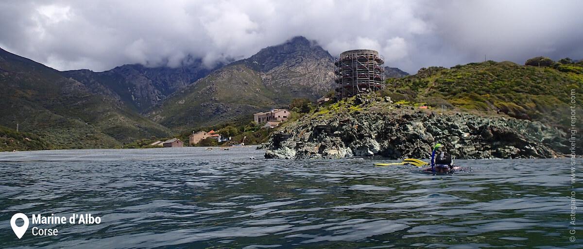 Snorkeling à la tour d'Albo