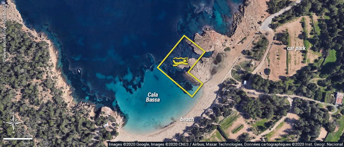 Cala Bassa snorkeling map, Ibiza