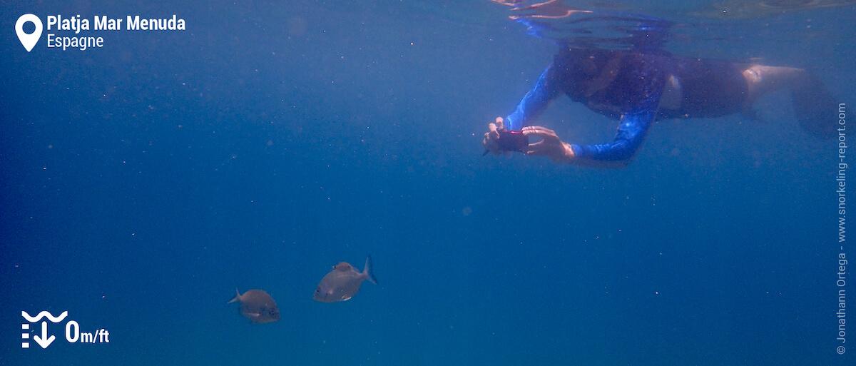 Snorkeleur à Platja Mar Menuda, Tossa de Mar