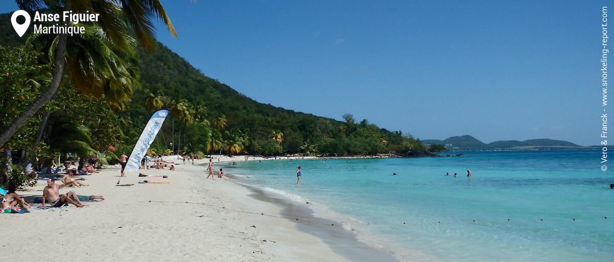 La plage d'Anse Figuier, Martinique