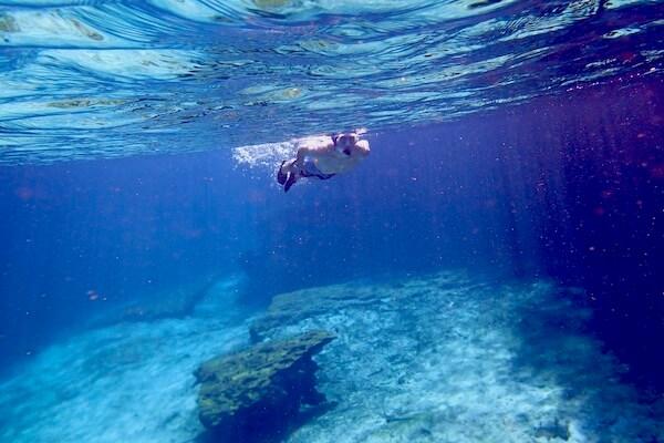 Snorkeling Cenote in Tulum