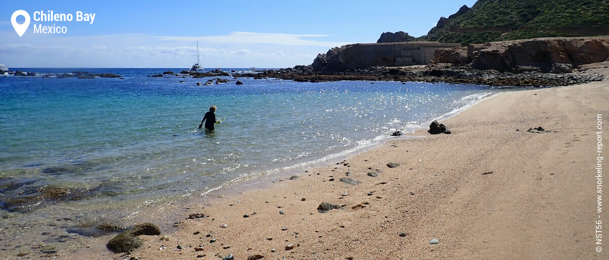 Chileno Bay snorkeling from the beach