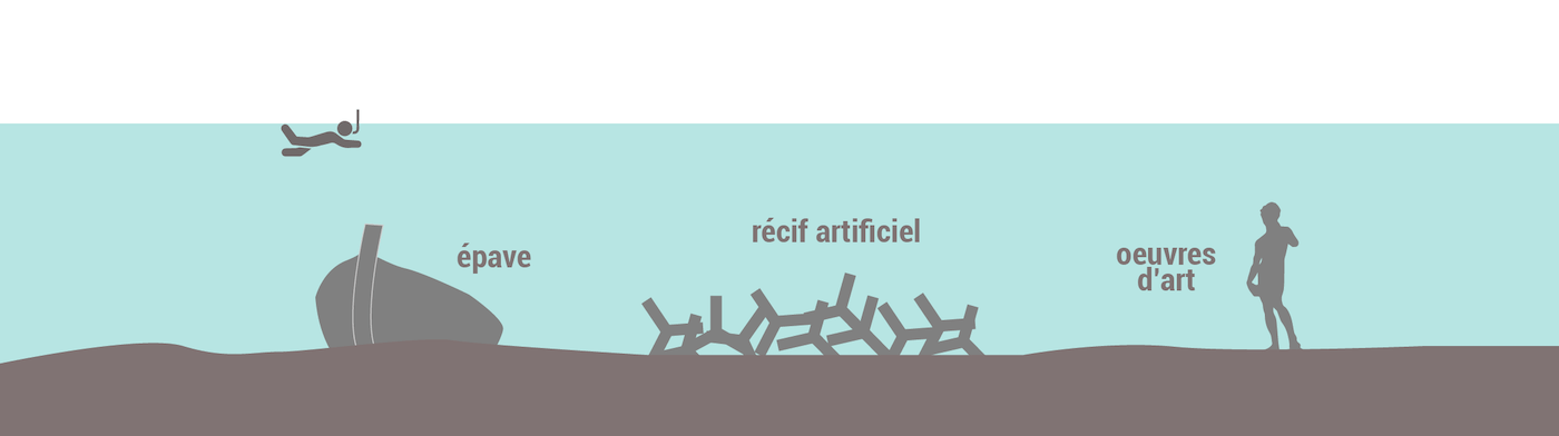 Epaves et récifs artificiels