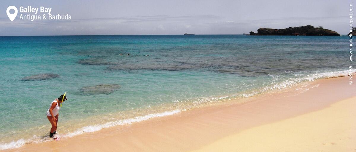Galley Bay snorkeling area