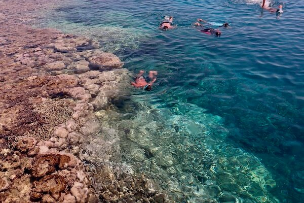 Reef drop off Egypt