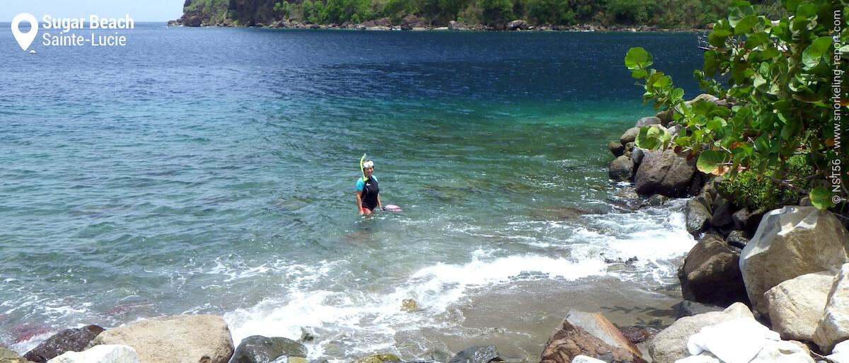 Vue sur la zone de snorkeling d'Anse Piton