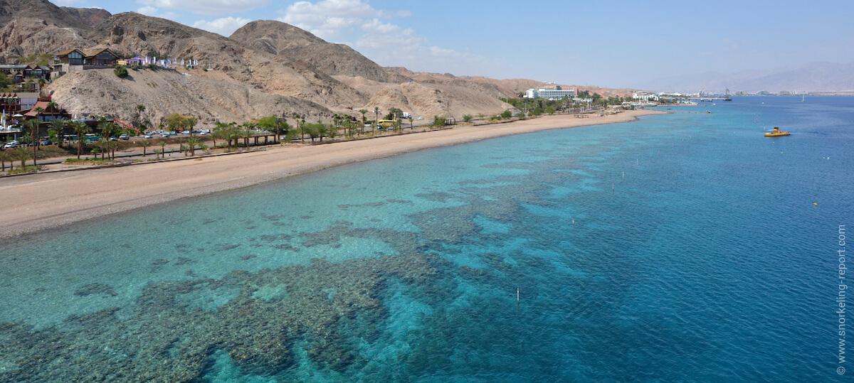 Coral reef in Eilat, Israel