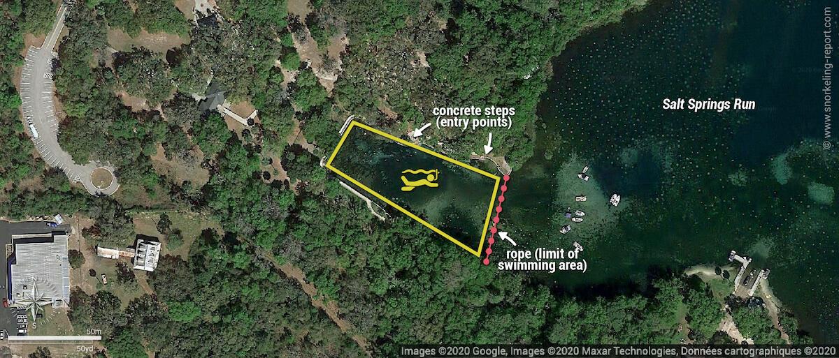 Salt Springs snorkeling map