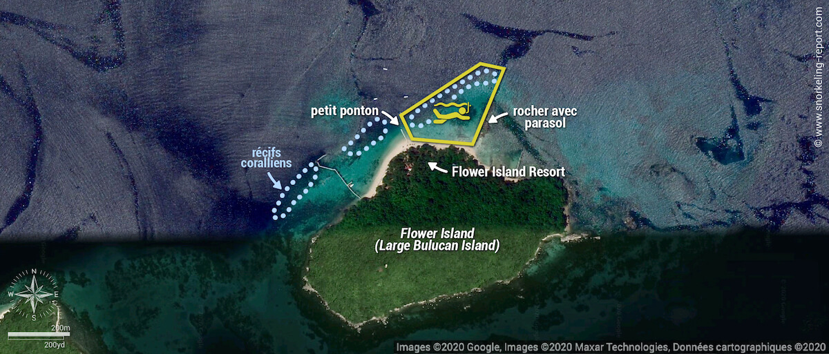 Carte snorkeling au Flower Island Resort, Palawan