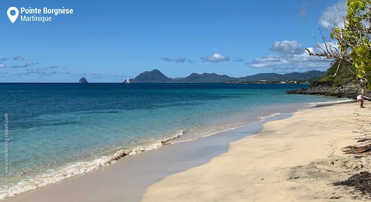 La plage de Pointe Borgnèse, Martinique