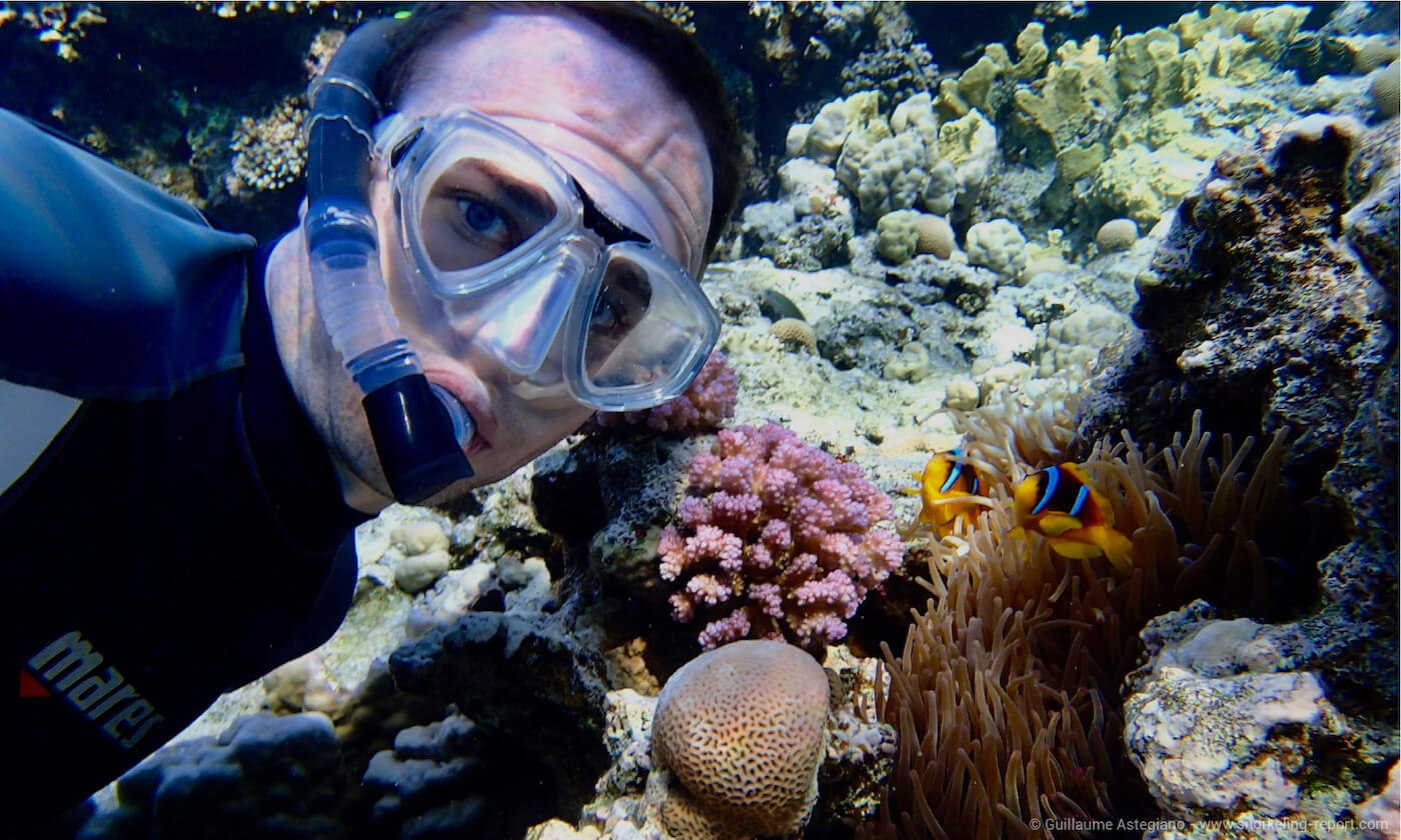A diver takes a selfie with anemonefish in Egypt