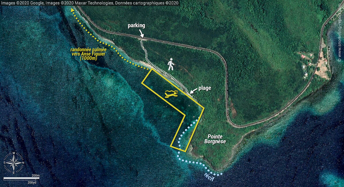 Carte snorkeling à la Pointe Borgnèse, Le Marin