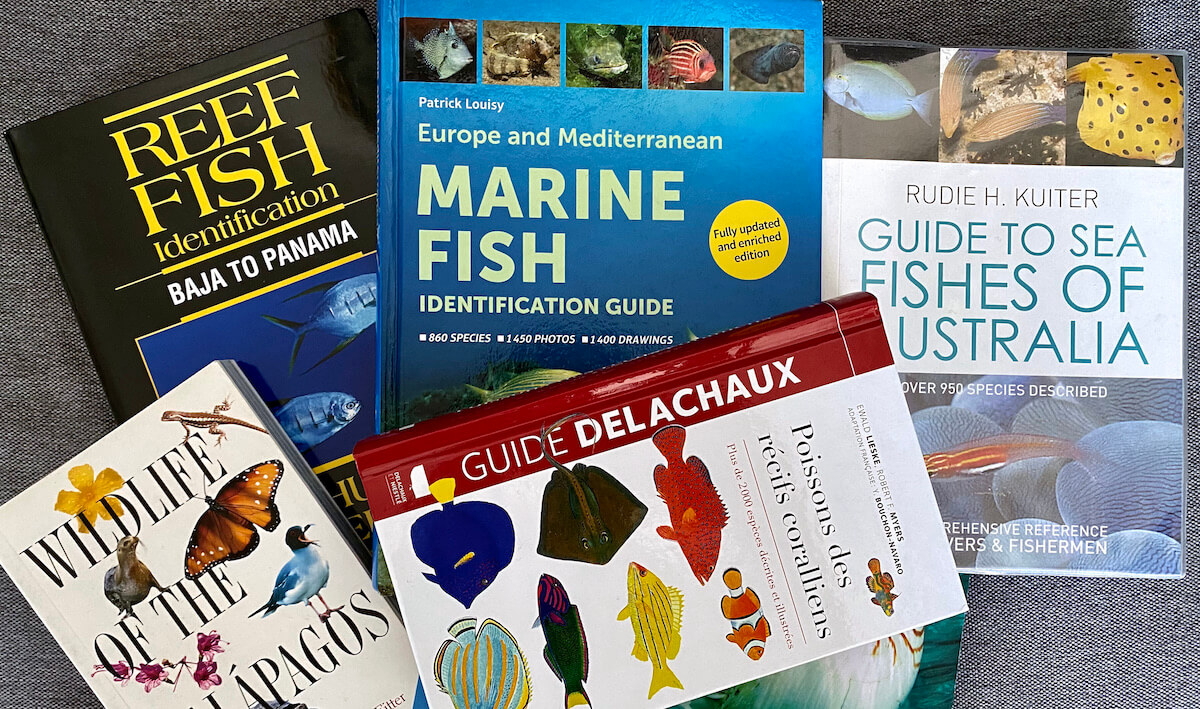 Collection of Fish ID books