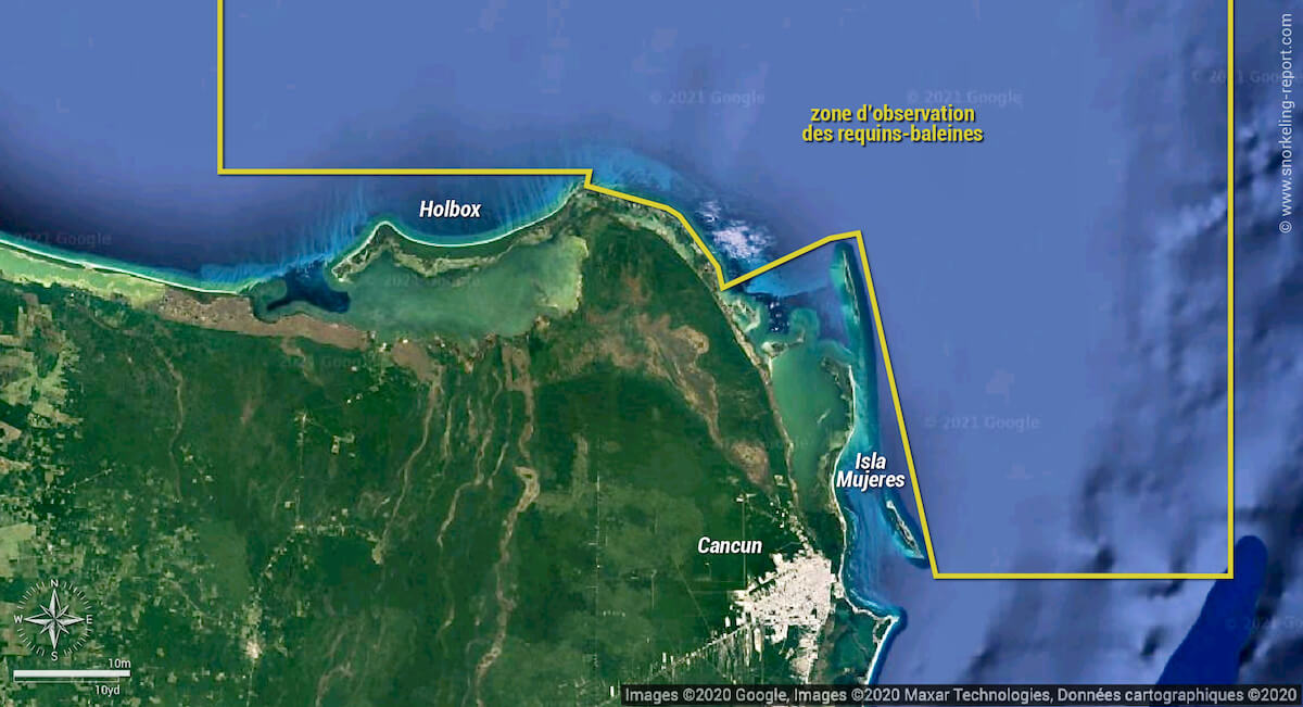 Zone d'observation des requins-baleine