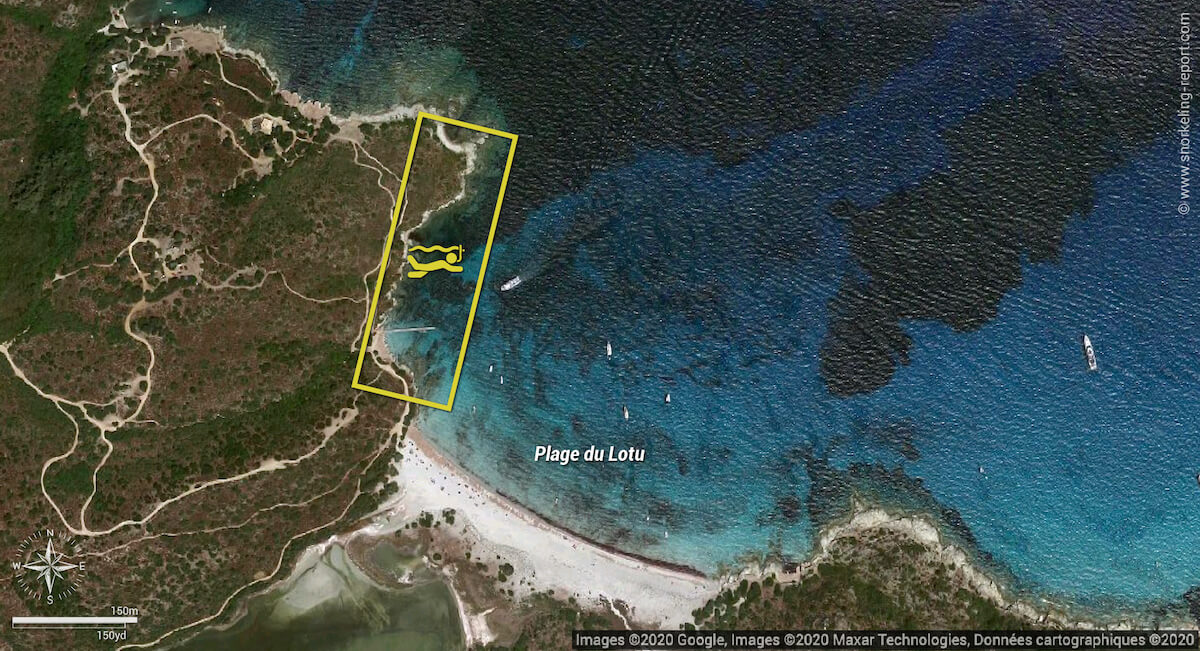Carte snorkeling Plage du Lotu, Corse